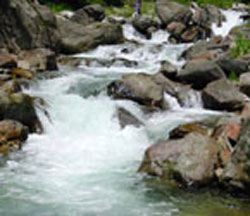 rila_river_new.jpg